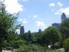 Views from central park.