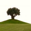 Golf_spanien - 1