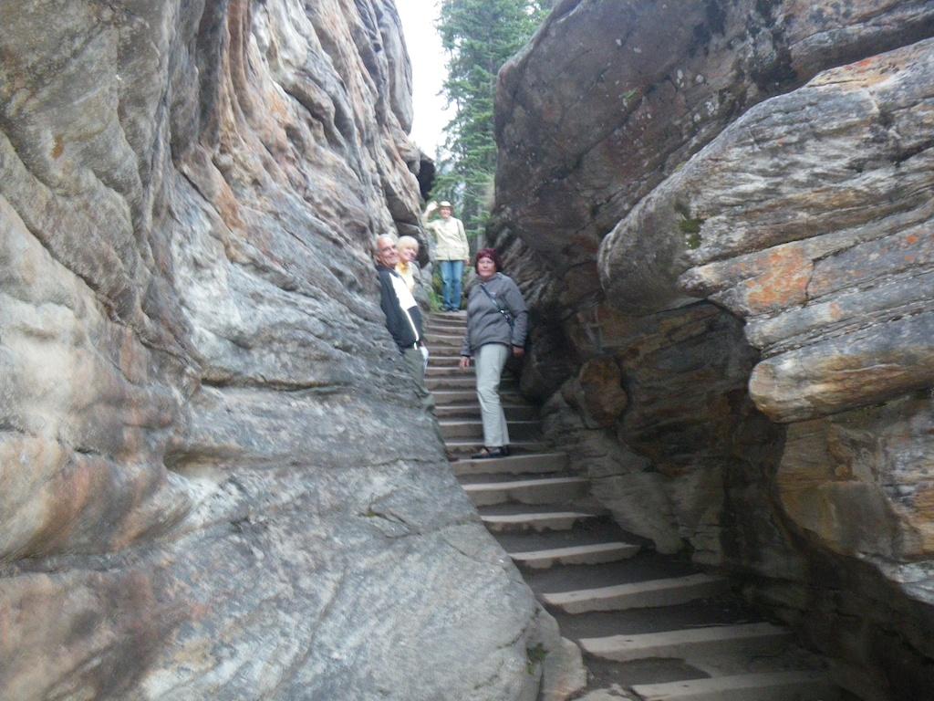 Down streams Athabasca falls