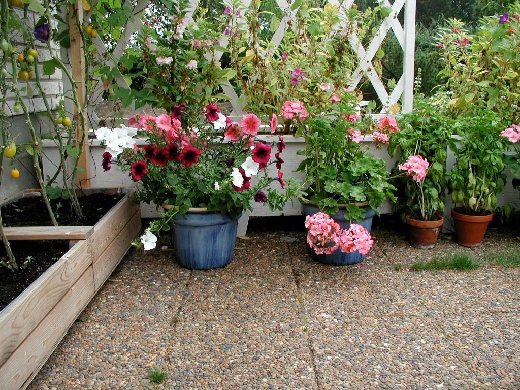 Blommor på uteplatsen