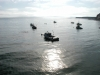 Båtar i hamnen Point Arena